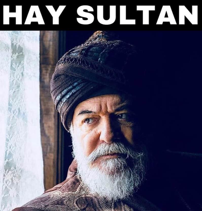 hay sultan dizisi oyuncuları